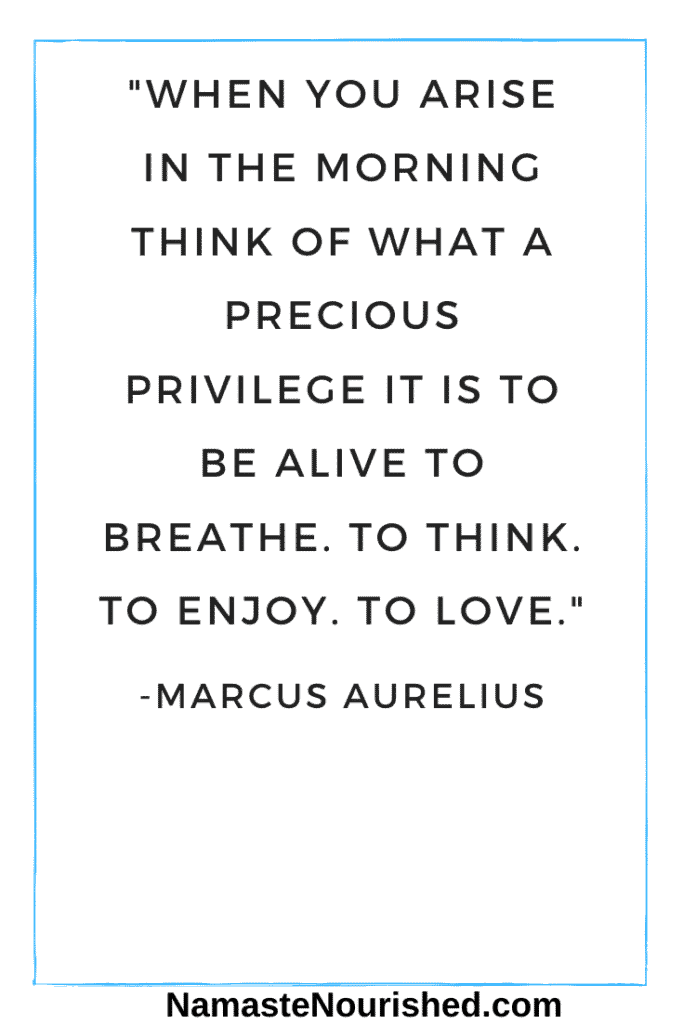 """When you arise in the morning think of what a precious privilege it is to be alive to breathe. To think. To enjoy. To love."" - Marcus Aurelius"